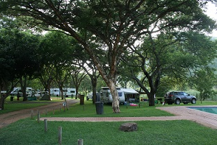 The shady camping ground